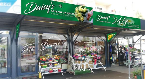 Артелие Daisy's