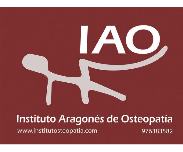INSTITUTO ARAGONES DE OSTEOPATIA