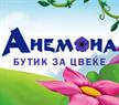 Anemona Cvet