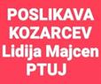 POSLIKAVA KOZARCEV