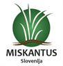 Miskantus Slovenija
