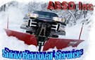 ABSO INC